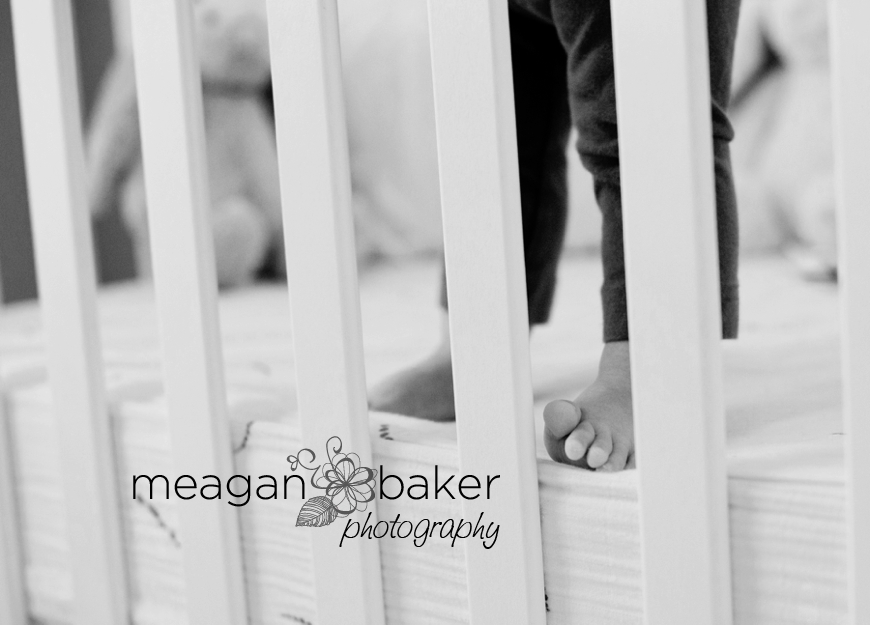 vancouver family photographer, meagan baker photography, family portraits, baby photos, toddler portraits, 6 months, 8 months_0002