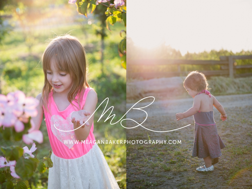 family photography, vancouver family photographer, meagan baker photography, cherry blossoms, photos with cherry blossoms_0001